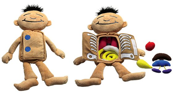 Anatomie-Puppe