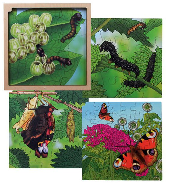 Life cycle puzzel Vlinder