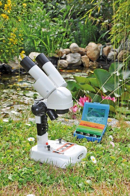Mikroskop für Einsteiger