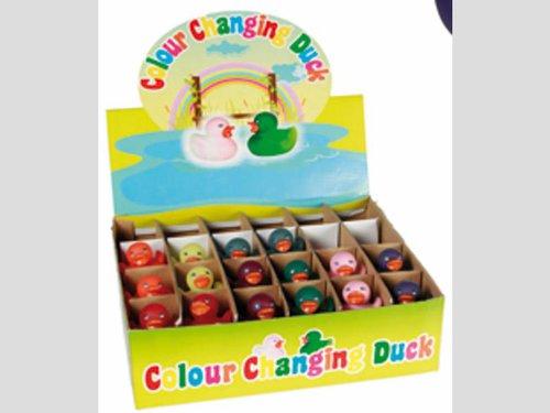 Farbwechsel-Ente