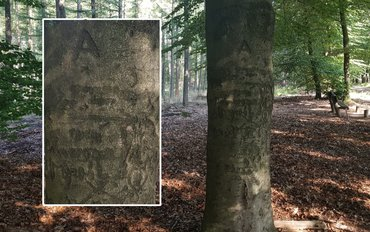 WOII inscriptie beuk op Sysselt