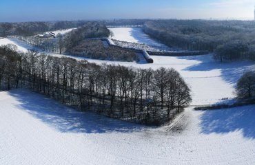 Wandelen met de boswachter, thema: Mariendaal Groene Bedstee in de sneeuw