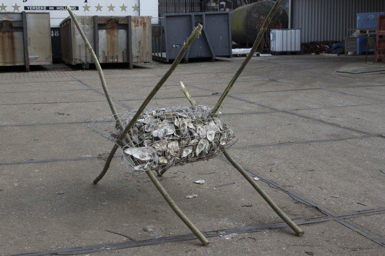 's Werelds eerste oesterwieg: een constructie van afbreekbaar gaas, hout en heel veel schelpen