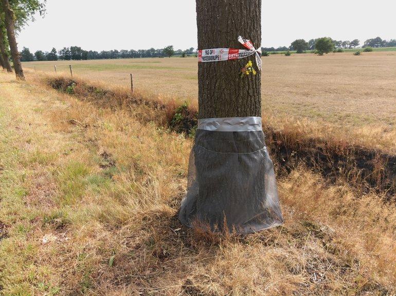 Met horgaas ingepakte bomen op 2 augustus 2019