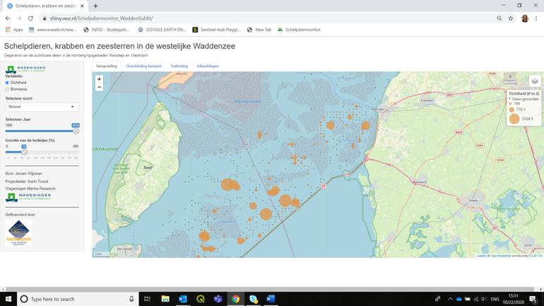 Voorbeeld: Verspreidingskaart van mosselen in het sublitoraal van de Waddenzee