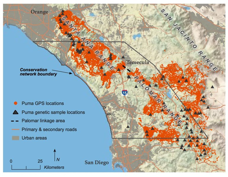 Conservation area and puma locations in Southern California