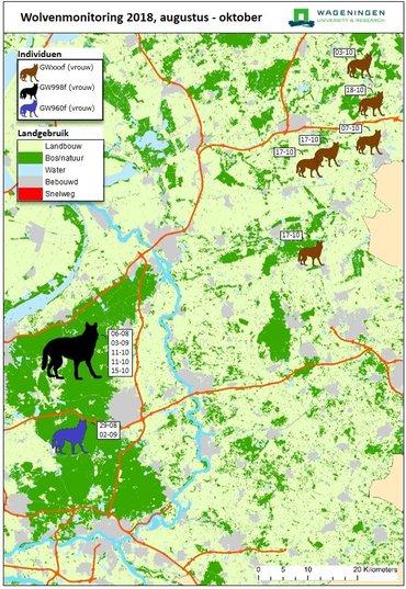 Op basis van DNA vastgestelde locaties waar de drie wolven zijn aangetroffen. Per individu en locatie is de vinddatum (dag-maand) weergegeven