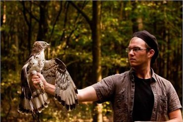Honeybuzzard in hand