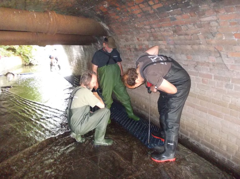 Setting up an eel ladder by the Zoological Society of London and citizen scientists in the Thames river system, to help and to count eels at a barrier