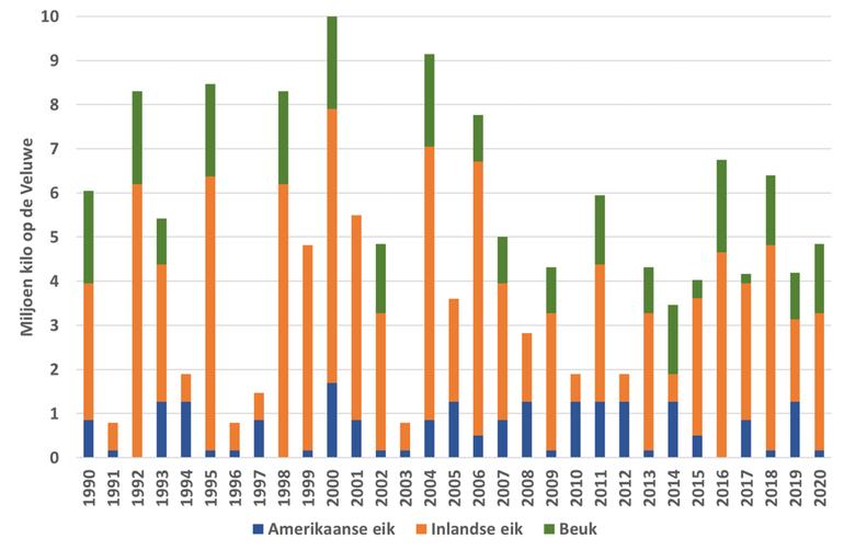 Jaarlijks aantal kilo's beukennootjes en eikels op de Veluwe