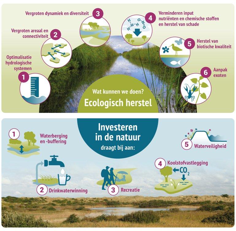Overzicht aangrijpingspunten en ecosysteemdiensten