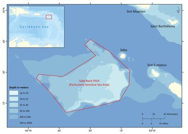 The Saba Bank is a large flat-topped seamount rising from a depth of 1.5 kilometers. It is considered as one of the world's marine biodiversity hotspots.
