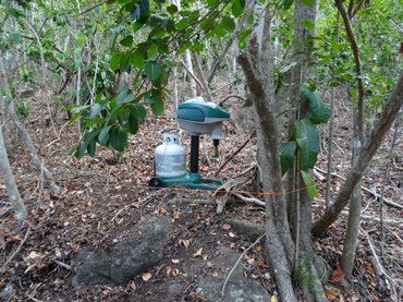 One of the mosquito traps just outside the crater of the Quill volcano on St. Eustatius