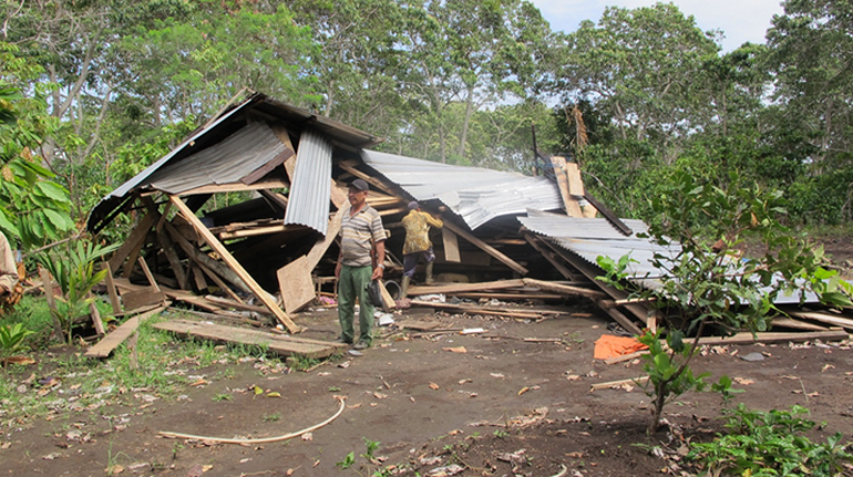 Home destroyed by elephants