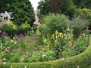Nature today welke vlinders vliegen in uw tuin for Vliegen in de tuin