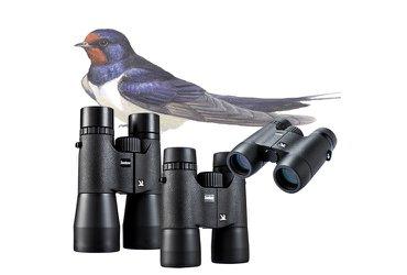 Vogelbescherming Zwaluw serie