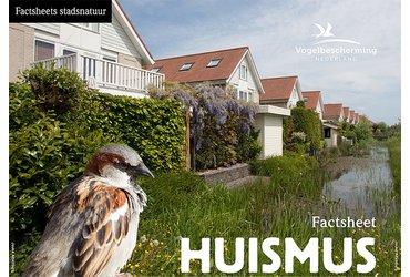 Huismus