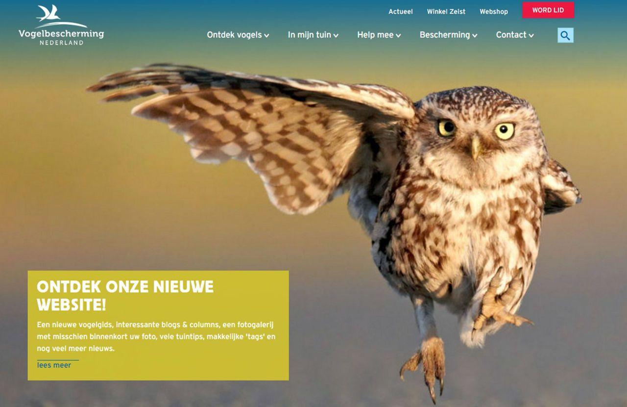 screenshot homepage vogelbescherming