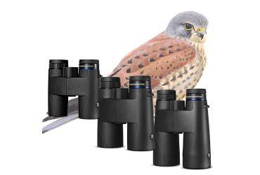 Vogelbescherming Valk serie