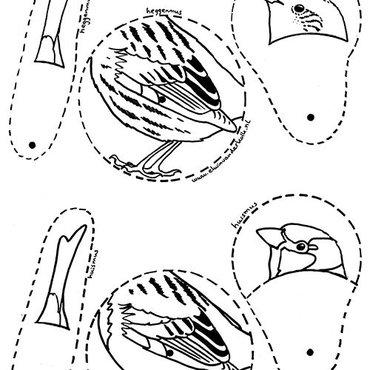 Kleurplaten Huis En Tuin.Download Leuke Kleurplaten Van Vogels Vogelbescherming
