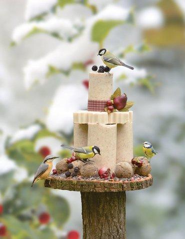 Tuinvogeltaart Vivara vivara.nl/vogeltaartpakket