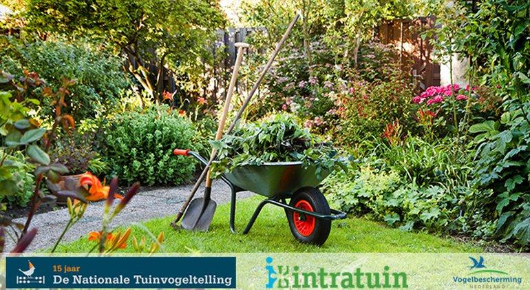 Tuin / Shutterstock