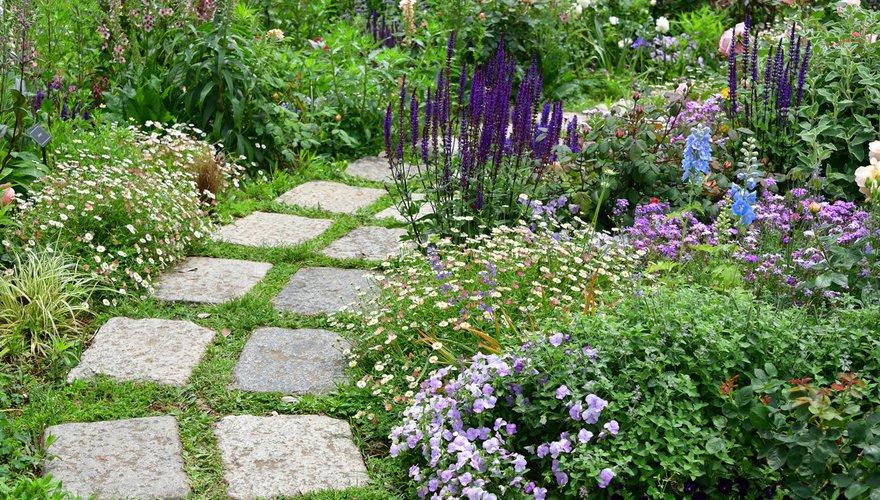 Groene tuin met tegels