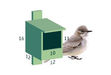 Nestkast grauwe vliegenvanger