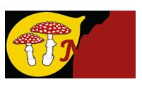 De Nederlandse Mycologische Vereniging