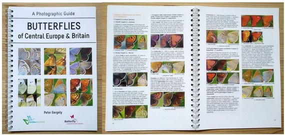 A Photographic Guide - Butterflies of Central Europe & Britain Author Peter Gergely.