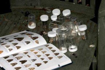 De vlinders worden gedetermineerd met de nachtvlindergids.
